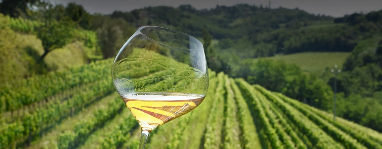 Food and wine tour in Friuli Venezia Giulia