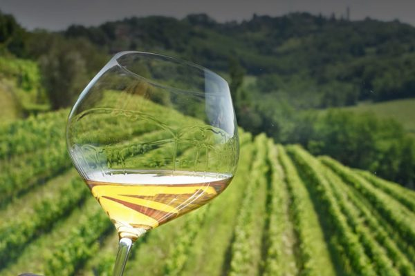 Food and wine tour in Friuli Venezia Giulia